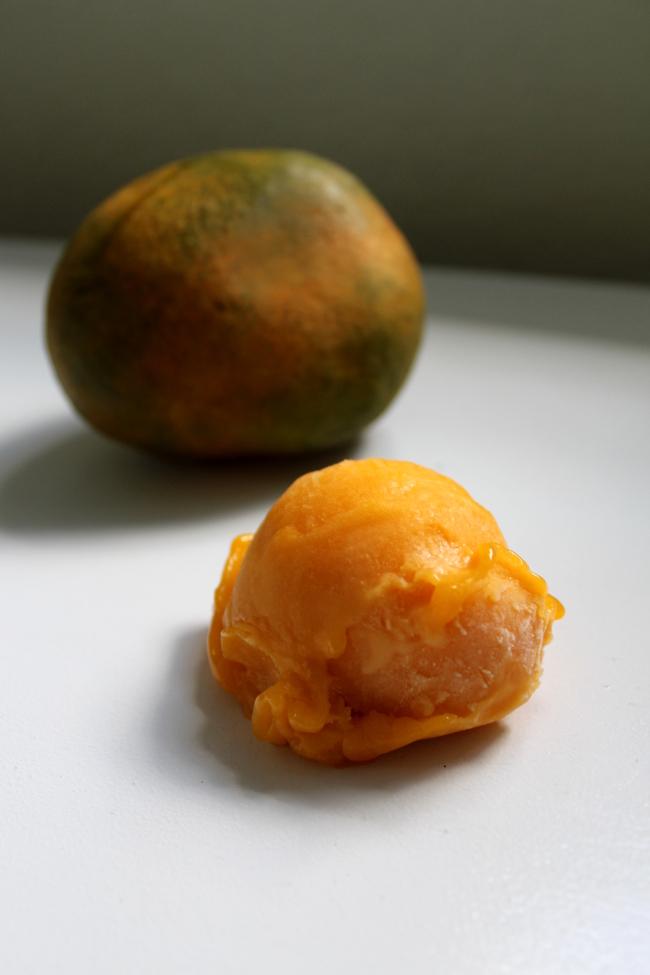 10-mangosorbet