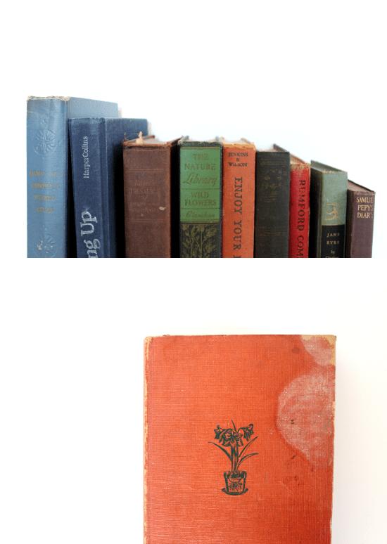 vintage houseplant book