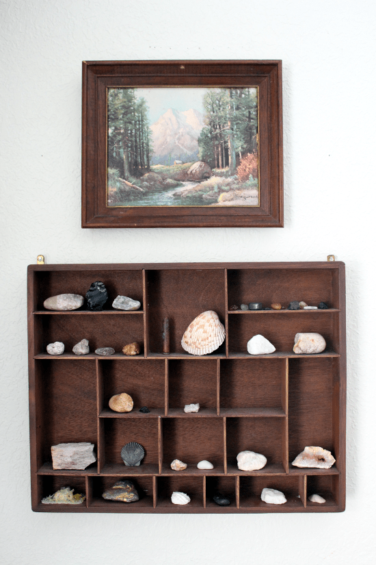 displaying rock collection