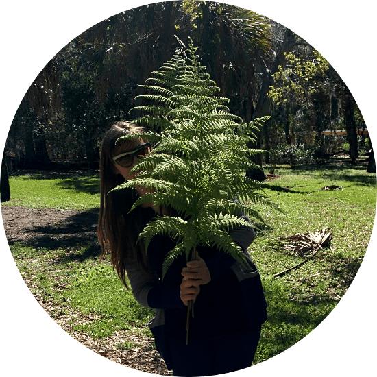 fern leaf profile photo