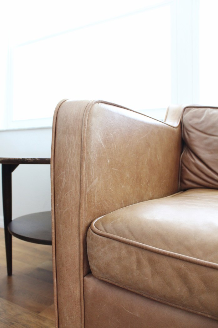 cat scratches leather sofa