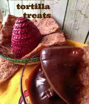 cinnamon tortilla treats