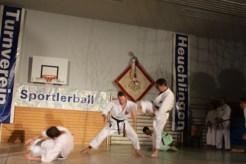 2015_11_tvh_sportlerball-078