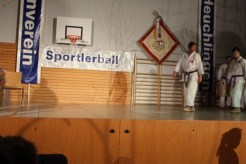 2015_11_tvh_sportlerball-079