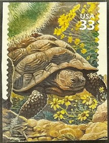 turtle stamp collecting
