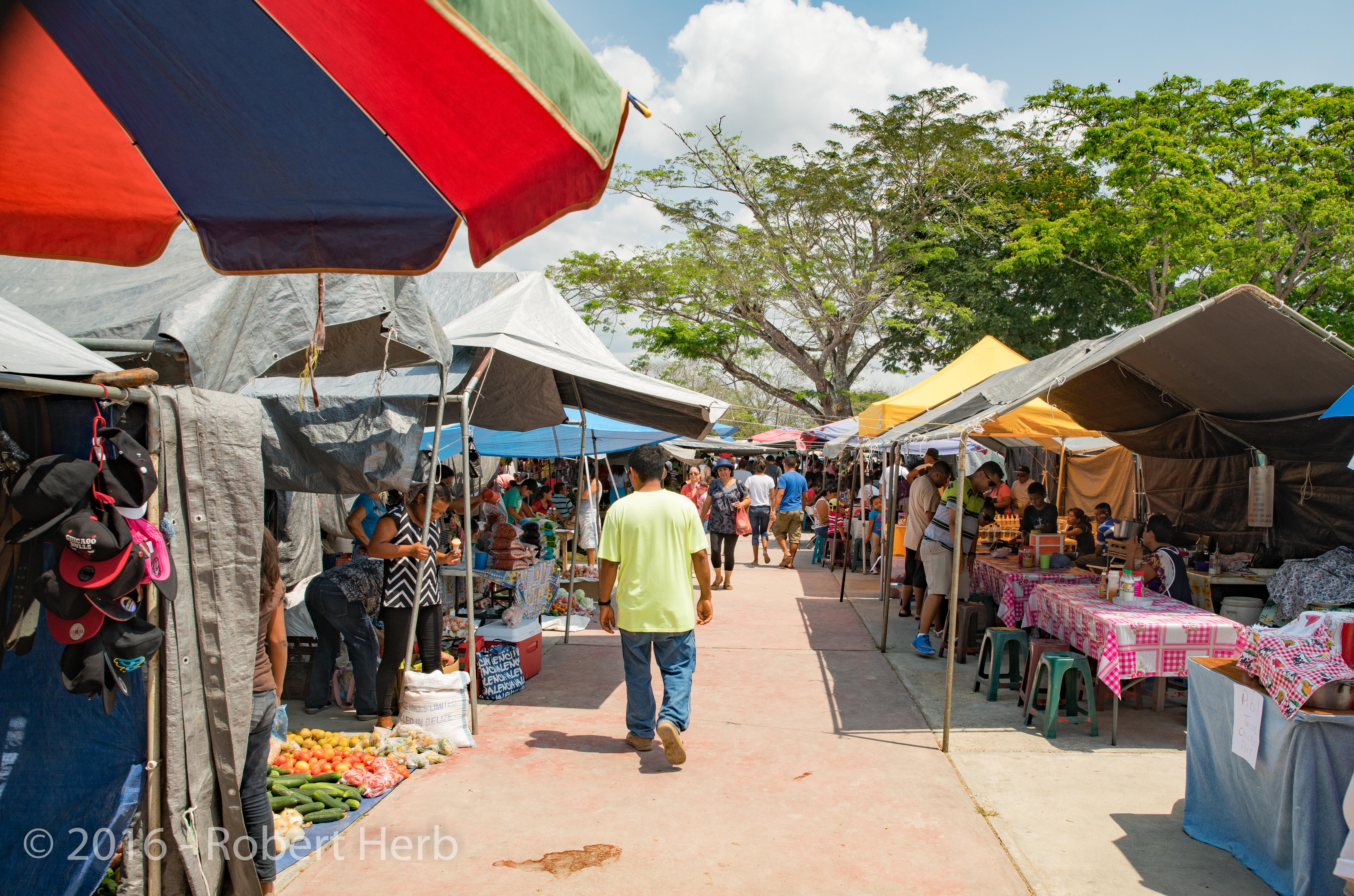 Farmers Market Turtle Views Blog