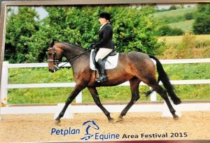 Susan Armstrong came to the have help from Diane with her home bred mare Poppy who was just trying to try affiliated Dreasage with Diane's help they have gone on to make it up to Elementary level and went to the winter Petplan championship
