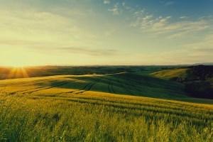 Villa Mangiacane è il luogo ideale dove trascorrere un magnifico weekend in Toscana