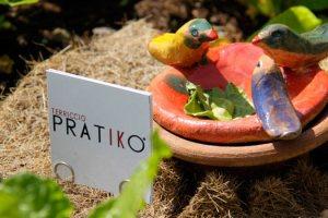 Terriccio Pratiko rappresenta la rivoluzione del giardinaggio urbano. In questa intervista ce ne parla l'inventore Jacopo Mei, toscano DOC.