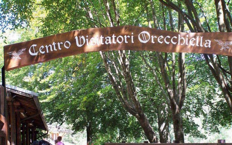 Il Parco dell'Orecchiella si trova in Garfagnana in Toscana