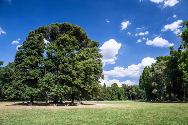 Expo Rurale Toscana 2014, Firenze, Parco delle Cascine. Il mondo rurale,agro-industriale e made in tuscany al centro del calendario di eventi