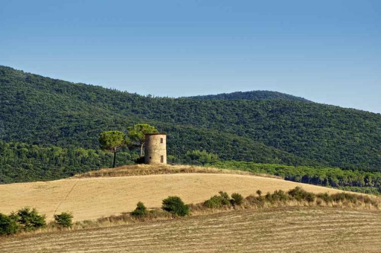 In Maremma, Toscana, si trova la Strada dei Sapori del Latte