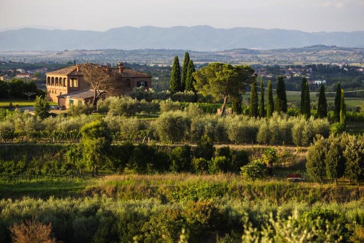 Itinera 2014: scoprire la bellezza delle colline di Scandicci e i prodotti del territorio. Da maggio a novembre, un programma ricco di eventi