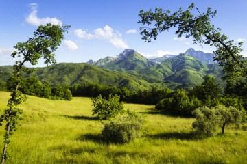 La Garfagnana è una delle zone più ricche di parchi naturali della Toscana: Parco dell'Orecchiella, Parco Avventura Selva del Buffardello e Oasi Lamastrone