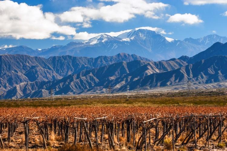 Tour di Mendoza, la regione dell'Argentina famosa per i suoi vigneti ai piedi delle Ande, e di Mendoza città, alla scoperta della gastronomia argentina