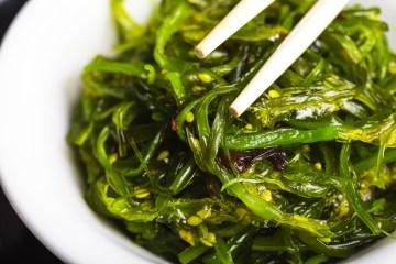 Le alghe alimentari sono un prezioso cibo che da sempre l'uomo da sempre utilizza in cucina, grazie al loro apporto nutritivo e vitaminico