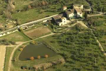 La Fattoria Ramerino, agricoltura biologica certificata, rappresenta una delle eccellenze italiane nel campo dell'olio extravergine di oliva
