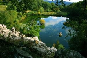 La Riserva Naturale di Pescinello, vicino a Roccalbegna è il regno degli alberi monumentali, un itinerario in Maremma davvero imperdibile