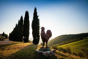 L' Agriturismo Querceto di Castellina in Chianti è un luogo accogliente, solare e rilassante dove vivere un'emozionante vacanza in Toscana