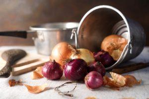 Il libro di ricette scritto da Pellegrino Artusi è il testo sacro della cucina toscana e fiorentina, la guida da seguire per cucinare toscano