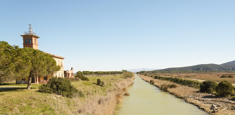 La bonifica della Maremma è una delle opere pubbliche paesaggistiche e infrastrutturali più importanti della storia della Toscana.