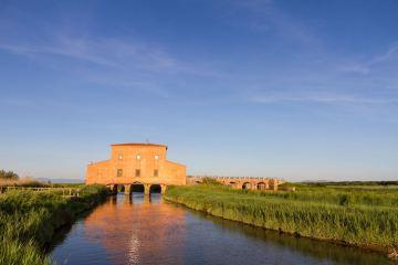 La Diaccia Botrona è una Riserva Naturale vicino a Castilgione della Pescaia nella Maremma grossetana, ideale per il birdwatching in Toscana