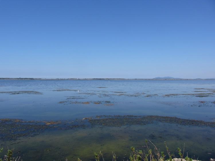 La Laguna di Orbetello alle pendici del Monte Argentario nella Bassa Maremma toscana è un patrimonio di biodiversità da preservare con cura.