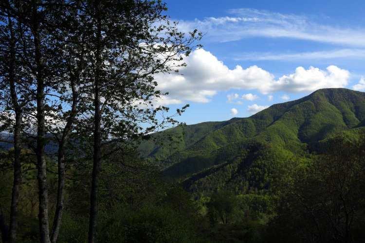 Tiziano Terzani ha trascorso i suoi ultimi mesi di vita Toscana, in un piccolo paese chiamato Orsigna dove oggi si trova il Sentiero di Tiziano Terzani