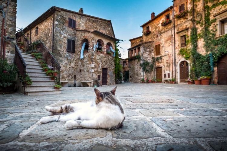 Montemerano è uno dei 23 Borghi più Belli d'Italia della Toscana. Questo borgo medivale si trova in Maremma, tra Saturnia e Manciano