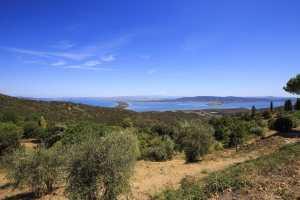 I migliori agriturismi all'Argentario e dintorni per indimenticabili vacanze nella Maremma toscana circondati da natura, tipicità e bellezza.