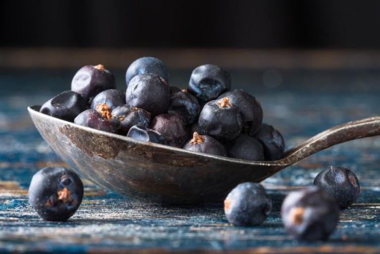 Le bacche di ginepro sono il cibo preferito del folletto Buffardello