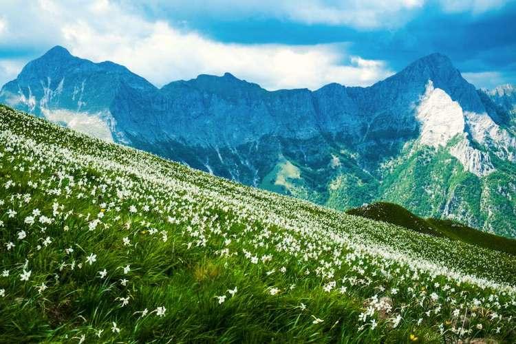 La montagna dell'Omo Morto in Garfagnana tra la Pania Secca e la Pania della Croce
