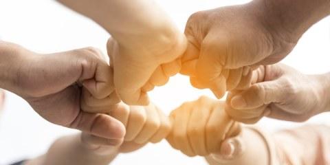 Mani giunte a cerchio, concetto unione fa la forza