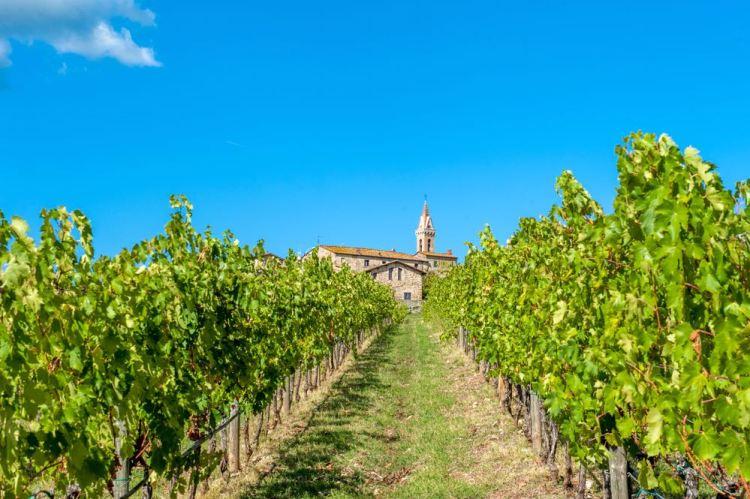 Il borgo fortificato di San Gusmè tra le vigne del Chianti Classico