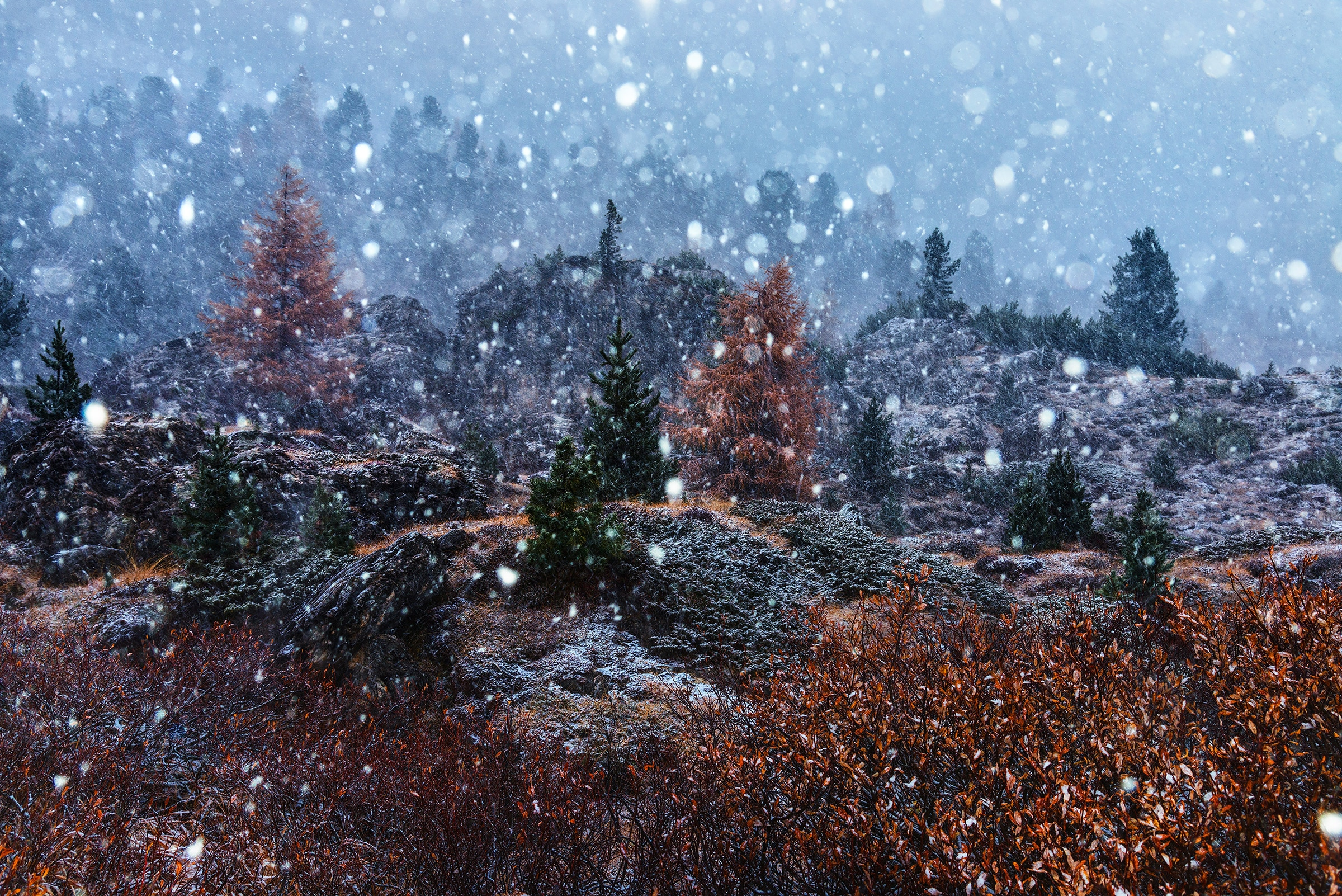 Beautiful snowfall in the Dolomites in autumn photography tour