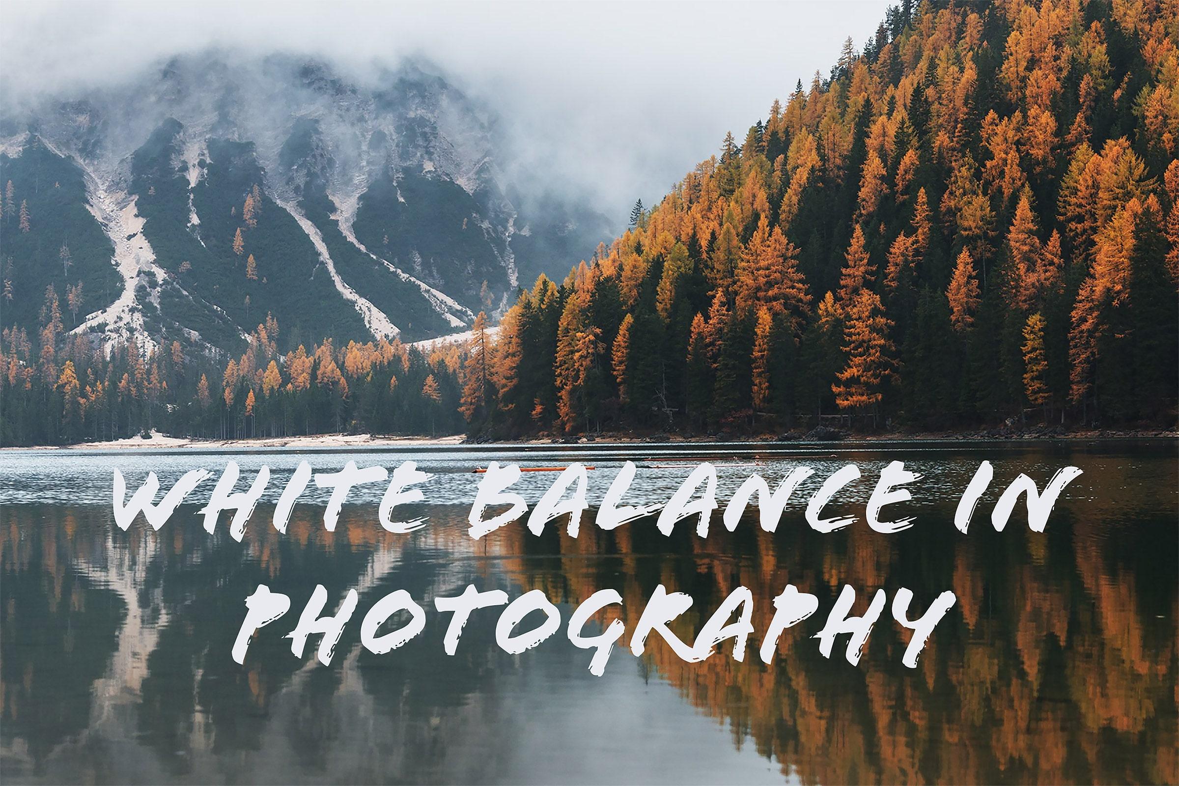 White balance in photography