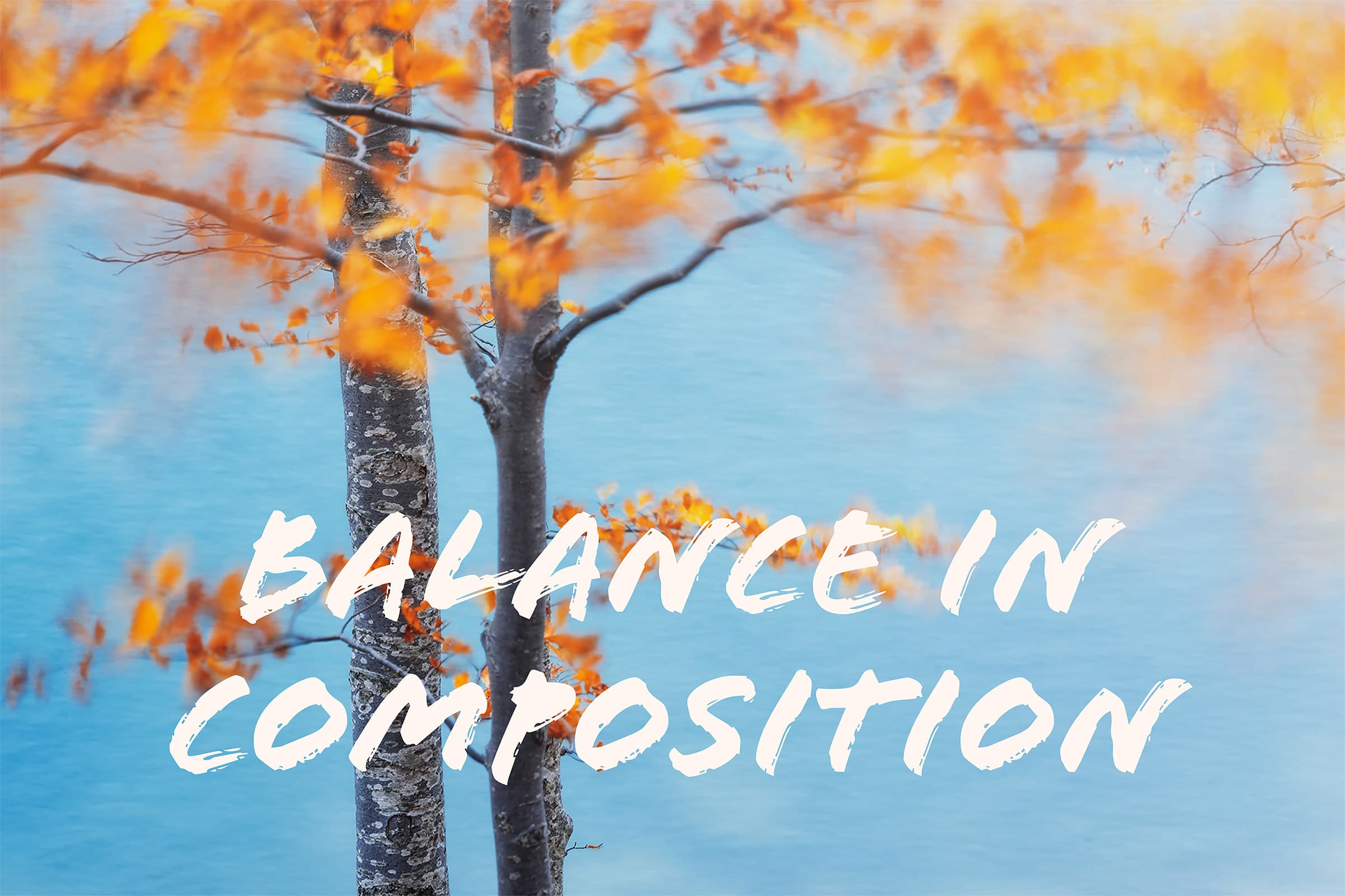 Balance in photography compositions