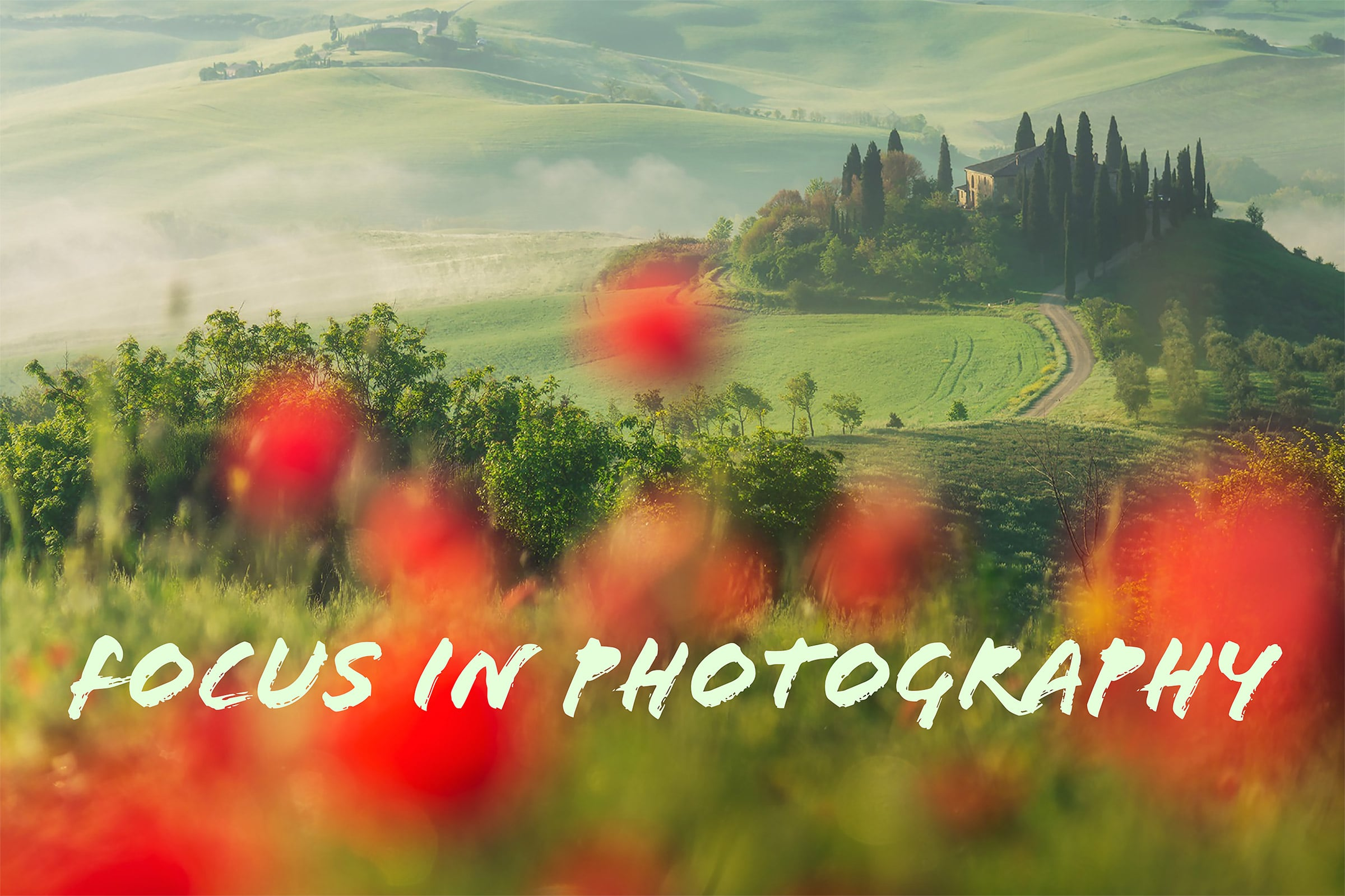How to focus in photography article