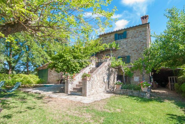 Farmhouse Tuscany Italy Pool Land Olives Tuscany Real Estate