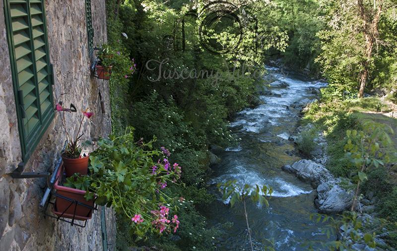 Bubbling River Pescia