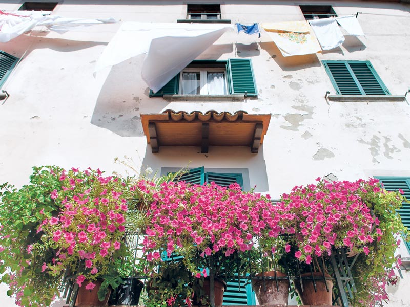 Laundry flowers and balcony, Pescia