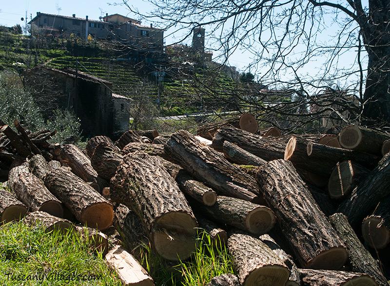 logs outside Aramo cemetery