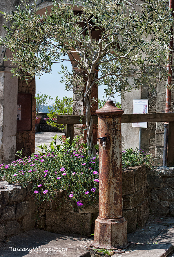 fountain-olive-tree-and-the-arch
