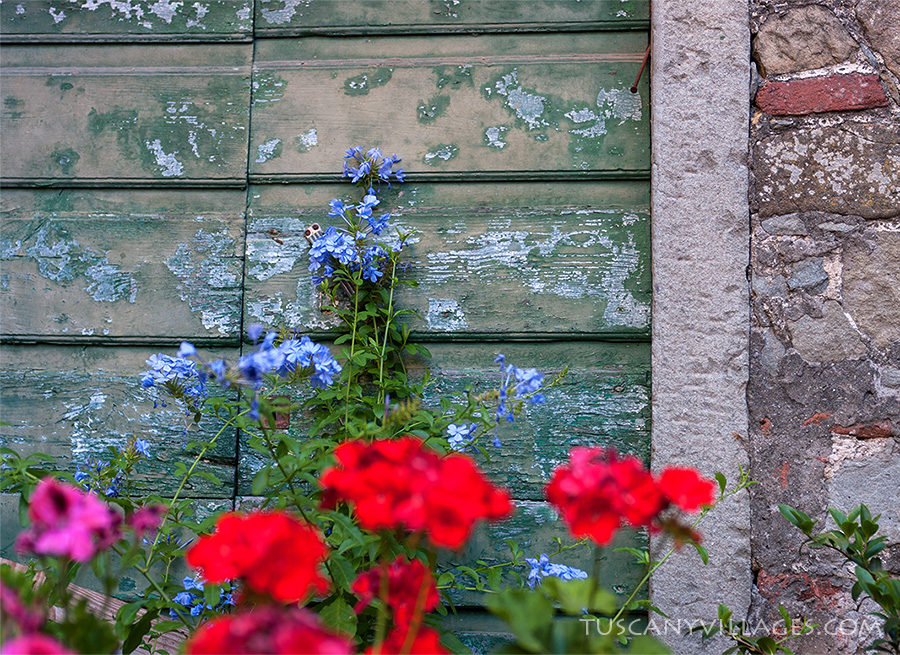 old green door and flowers