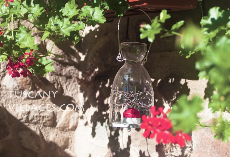 Hanging candle and trailing geraniums