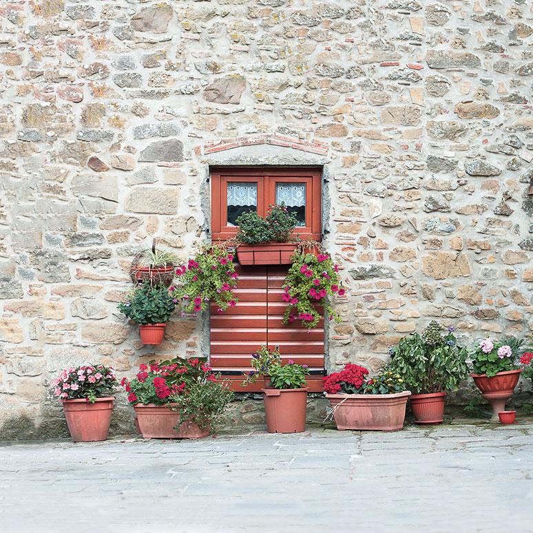 Medicina-flower-pots-and-door