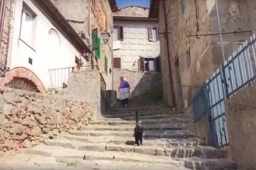 Cat-video-bomb-Tuscany