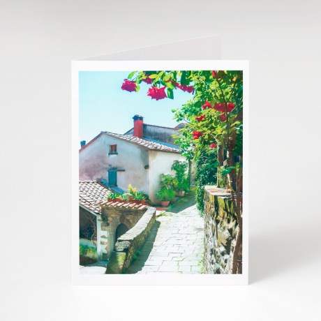 Sorana Greeting Card