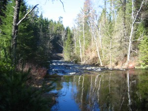 Cross River rapids by Round Lake Road