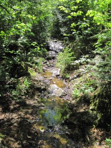 Granite River portage, high water in June